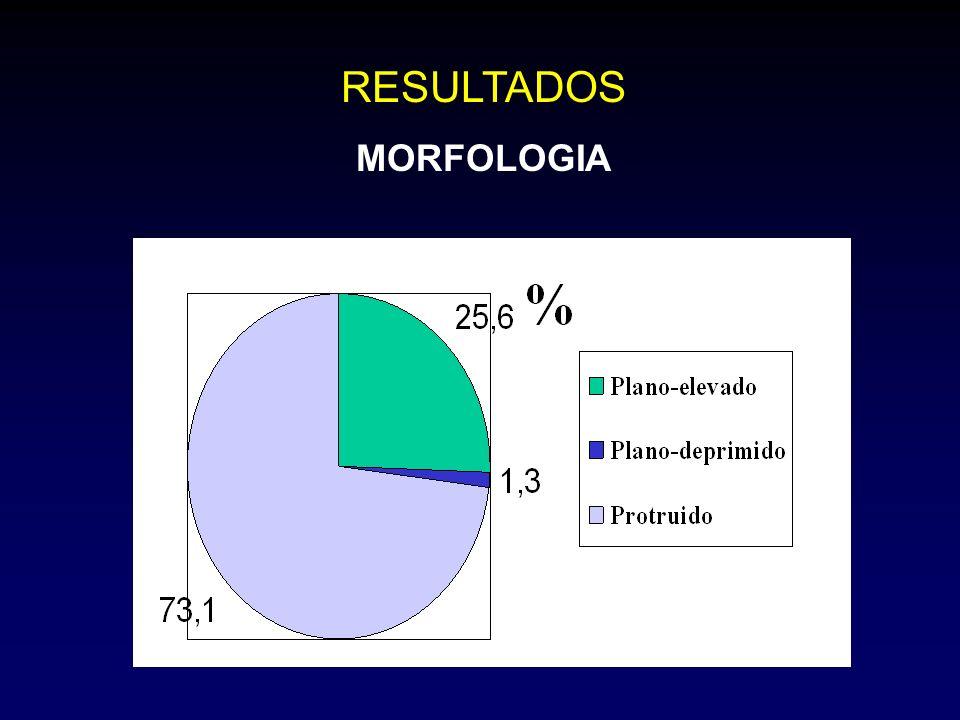 RESULTADOS MORFOLOGIA