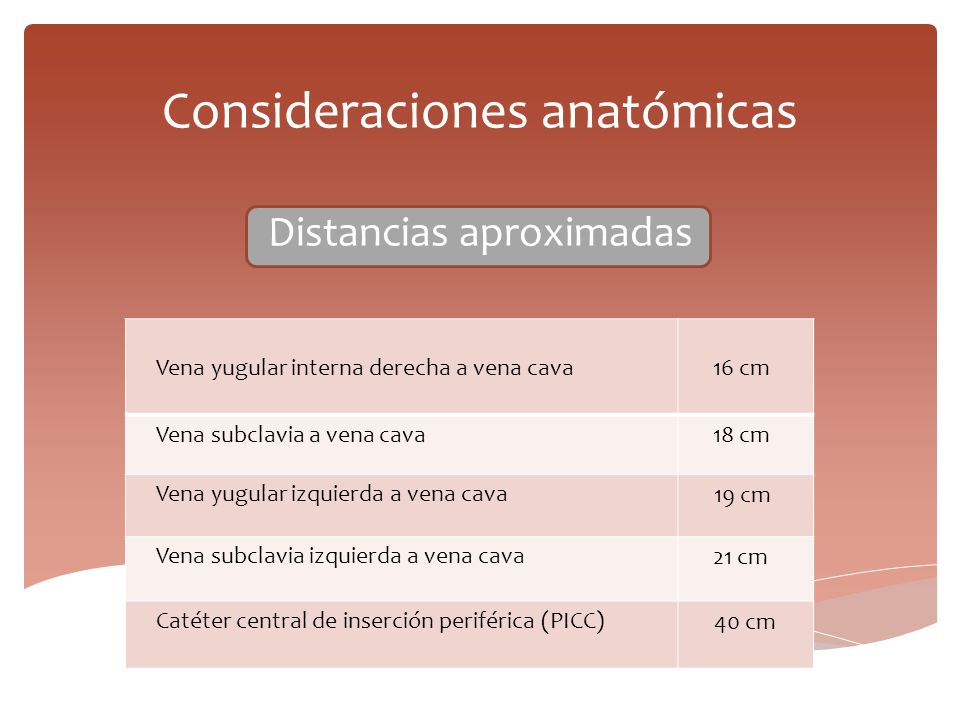 Consideraciones anatómicas Distancias aproximadas