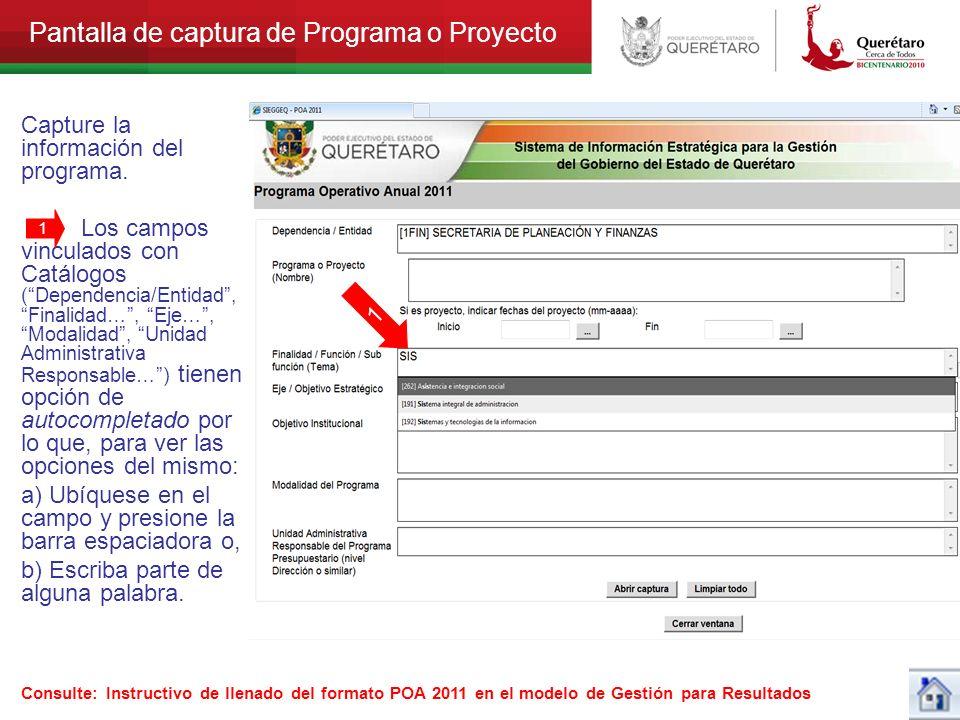 Pantalla de captura de Programa o Proyecto