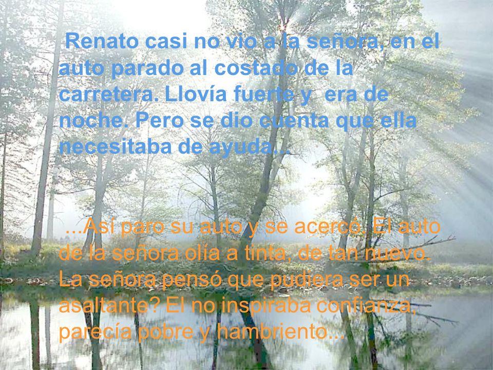 Renato casi no vio a la señora, en el auto parado al costado de la carretera. Llovía fuerte y era de noche. Pero se dio cuenta que ella necesitaba de ayuda...