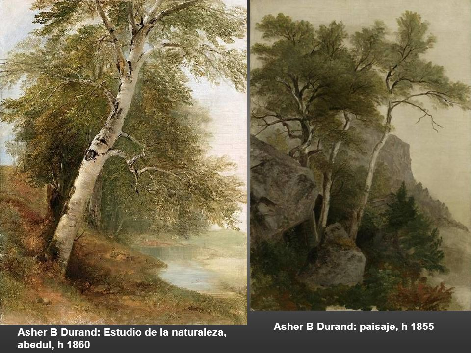 Asher B Durand: paisaje, h 1855