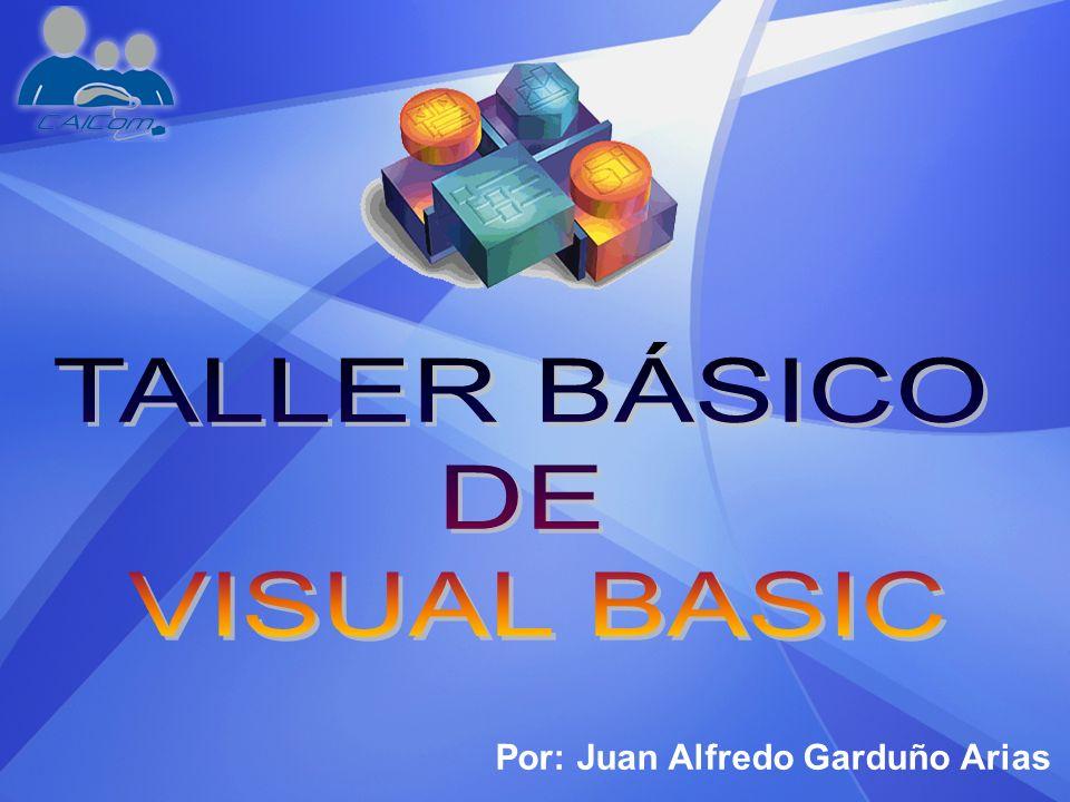 TALLER BÁSICO DE VISUAL BASIC Por: Juan Alfredo Garduño Arias