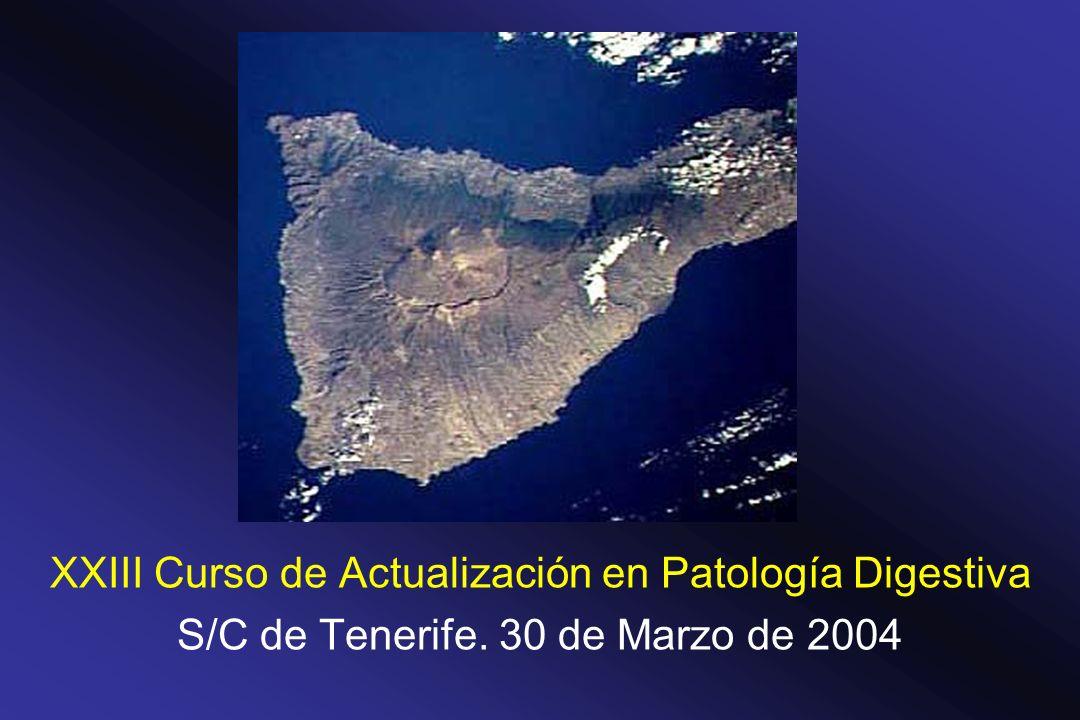 XXIII Curso de Actualización en Patología Digestiva