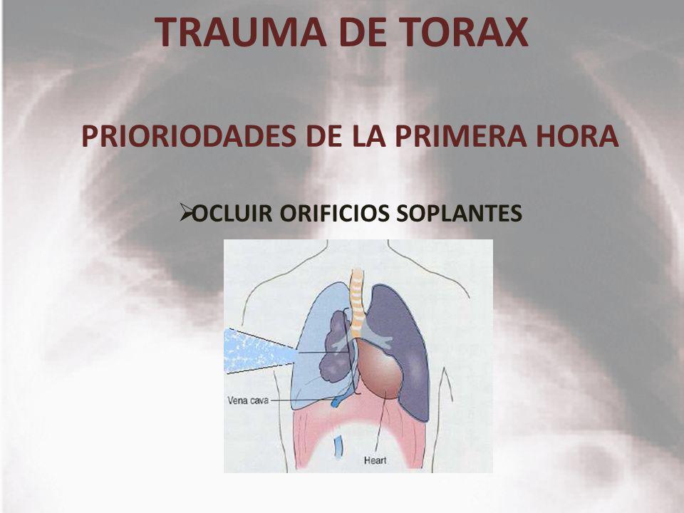 PRIORIODADES DE LA PRIMERA HORA OCLUIR ORIFICIOS SOPLANTES
