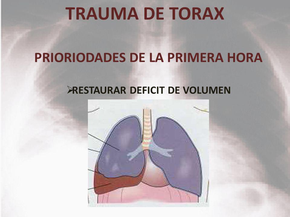 PRIORIODADES DE LA PRIMERA HORA RESTAURAR DEFICIT DE VOLUMEN