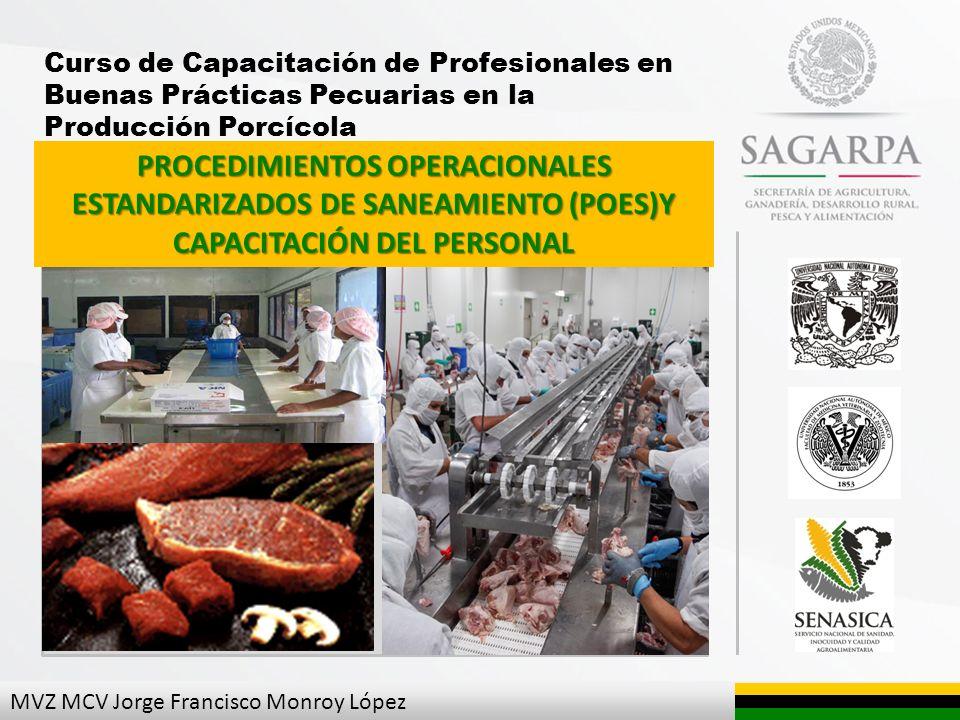 Curso de Capacitación de Profesionales en Buenas Prácticas Pecuarias en la Producción Porcícola