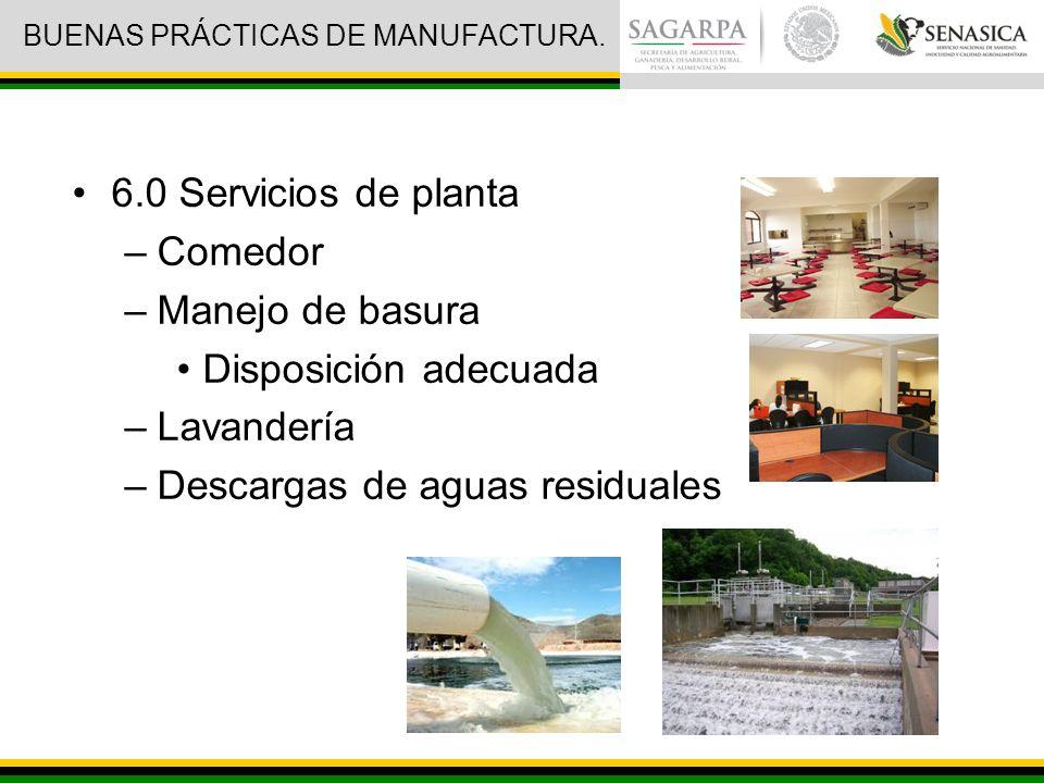 BUENAS PRÁCTICAS DE MANUFACTURA.