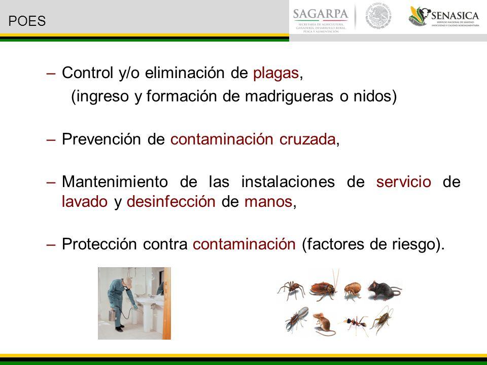 Control y/o eliminación de plagas,