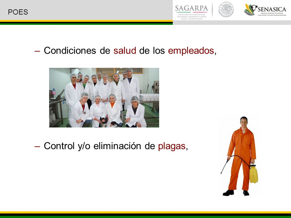 Condiciones de salud de los empleados,