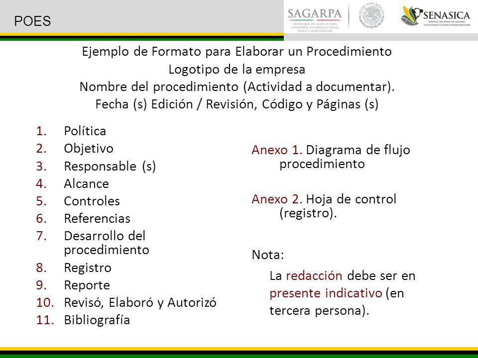 Desarrollo del procedimiento Registro Reporte