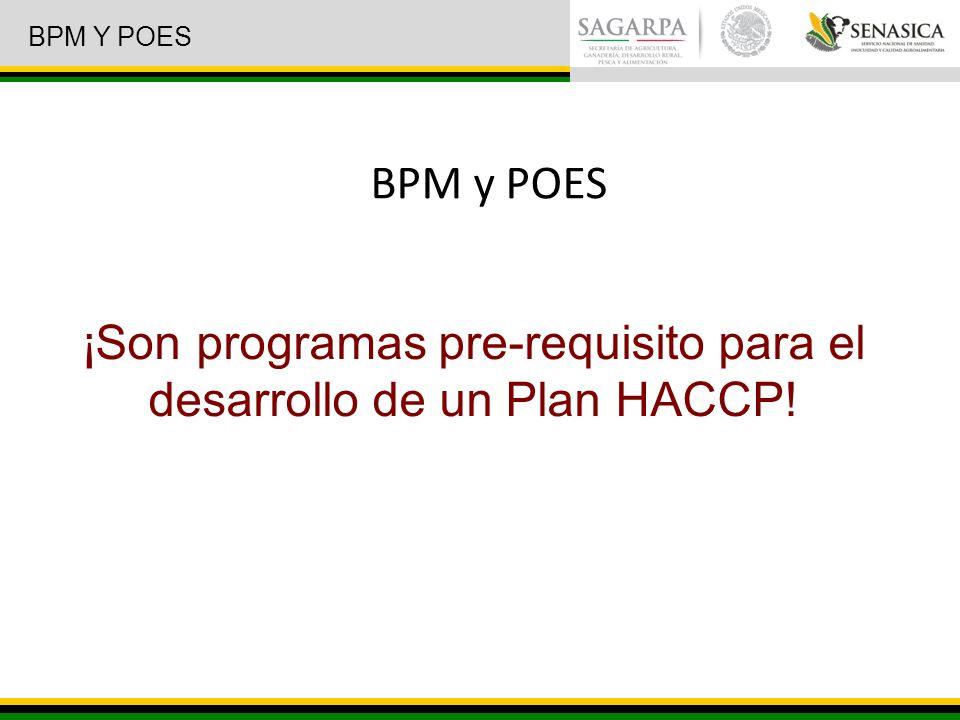 ¡Son programas pre-requisito para el desarrollo de un Plan HACCP!