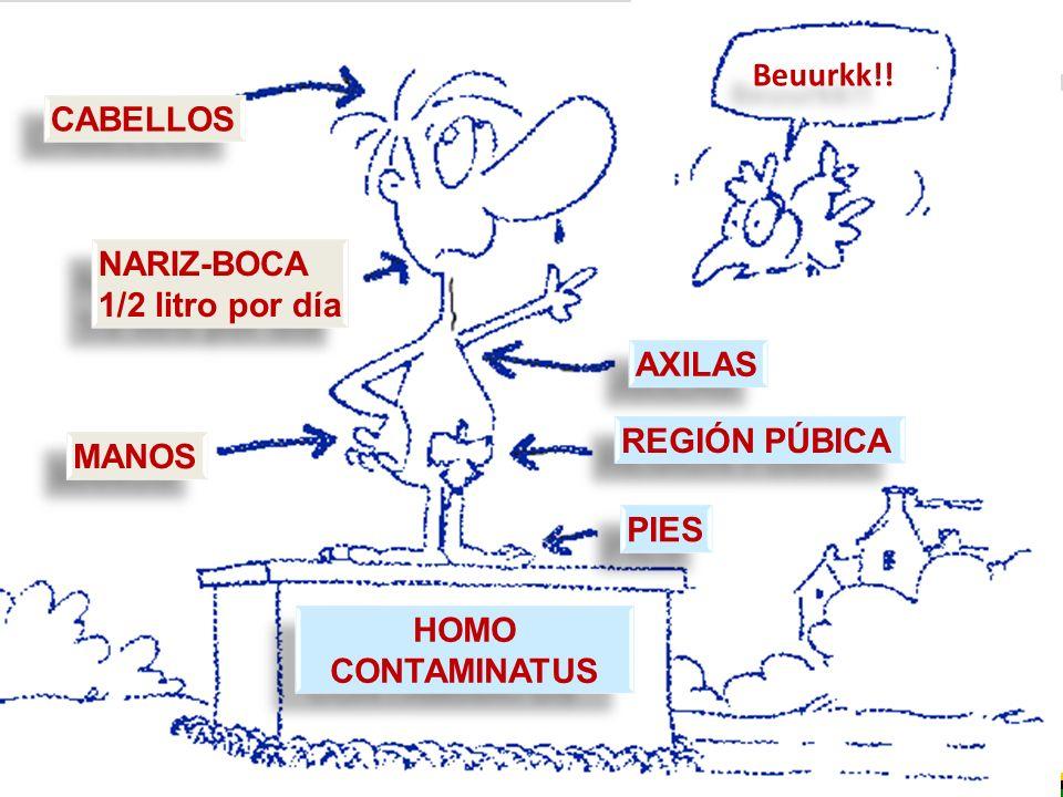 HOMO CONTAMINATUS CABELLOS NARIZ-BOCA 1/2 litro por día PIES REGIÓN PÚBICA AXILAS MANOS Beuurkk!!