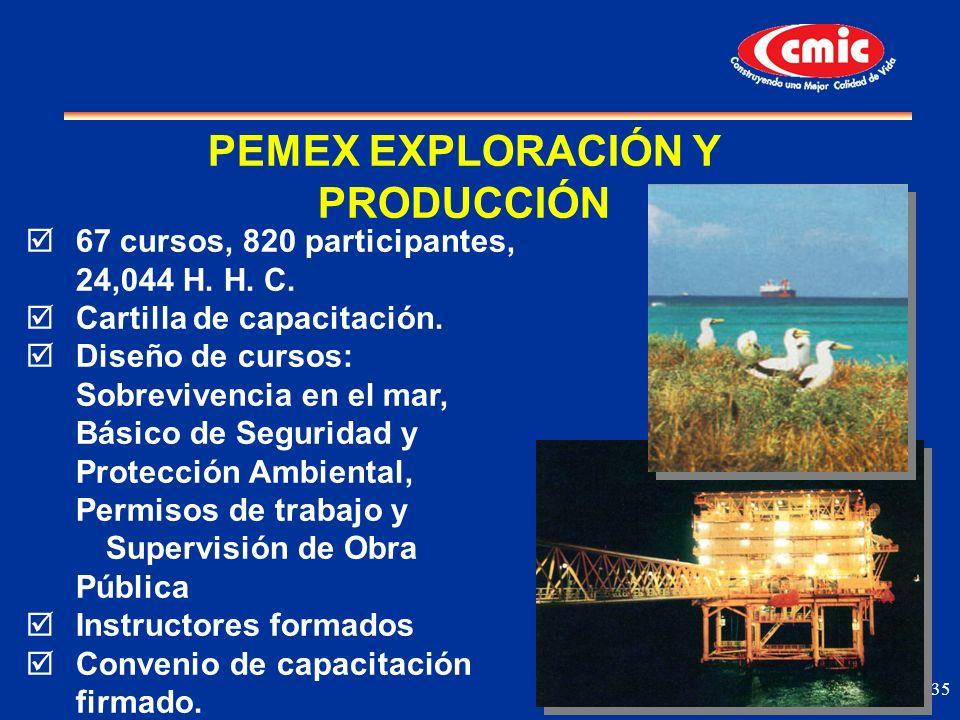 PEMEX EXPLORACIÓN Y PRODUCCIÓN