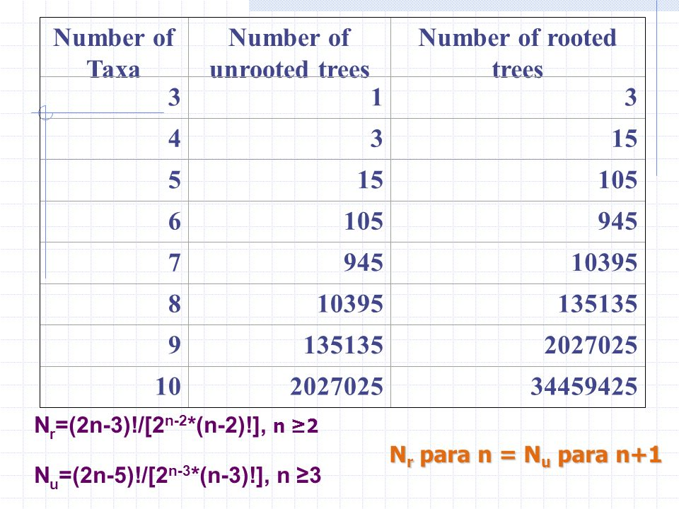Number of unrooted trees