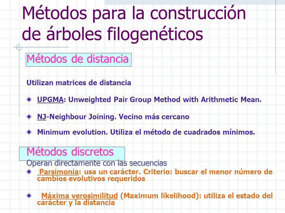 Métodos para la construcción de árboles filogenéticos