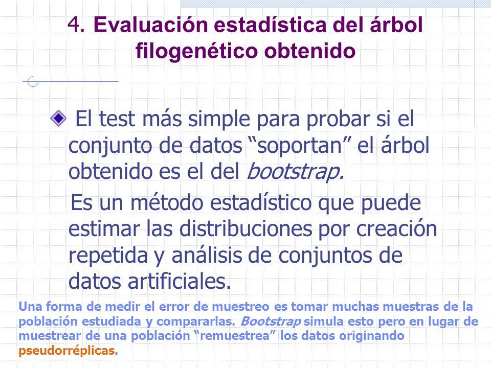 4. Evaluación estadística del árbol filogenético obtenido