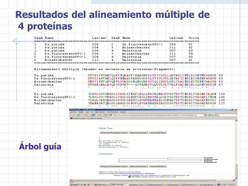 Resultados del alineamiento múltiple de 4 proteínas
