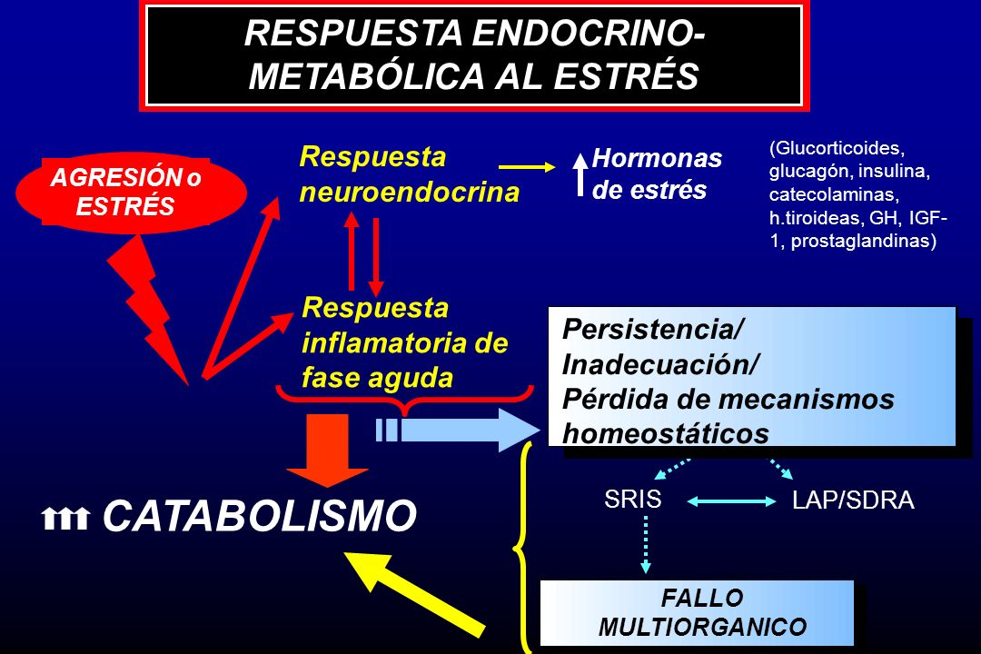 RESPUESTA ENDOCRINO-METABÓLICA AL ESTRÉS