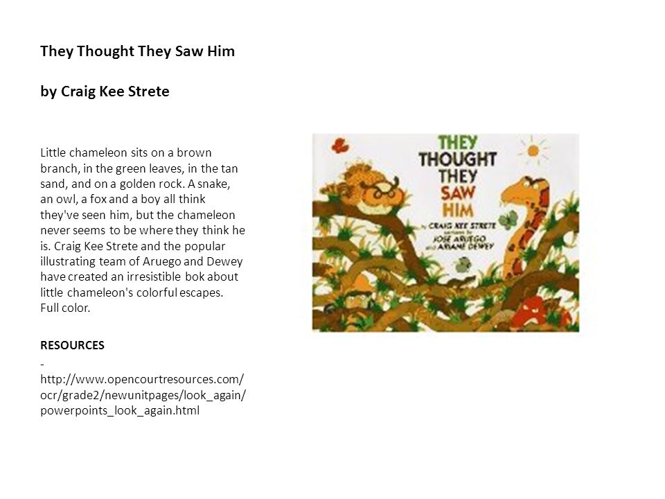 They Thought They Saw Him by Craig Kee Strete