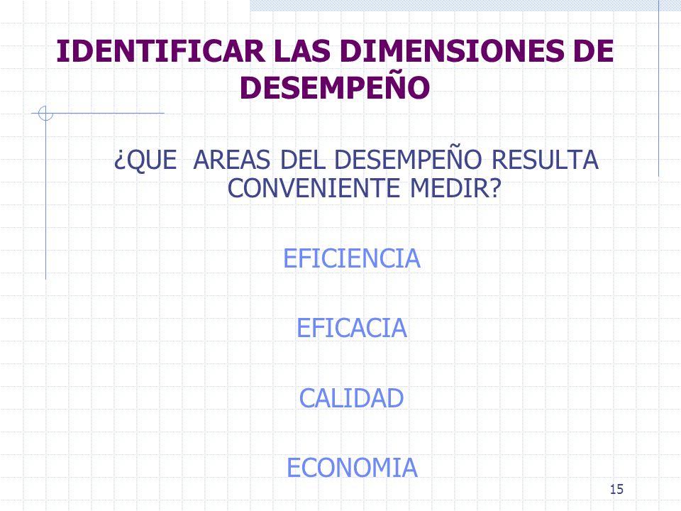 IDENTIFICAR LAS DIMENSIONES DE DESEMPEÑO