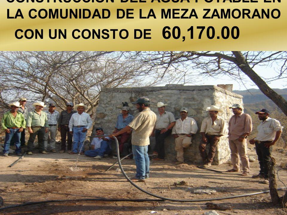 CONSTRUCCION DEL AGUA POTABLE EN LA COMUNIDAD DE LA MEZA ZAMORANO CON UN CONSTO DE 60,170.00