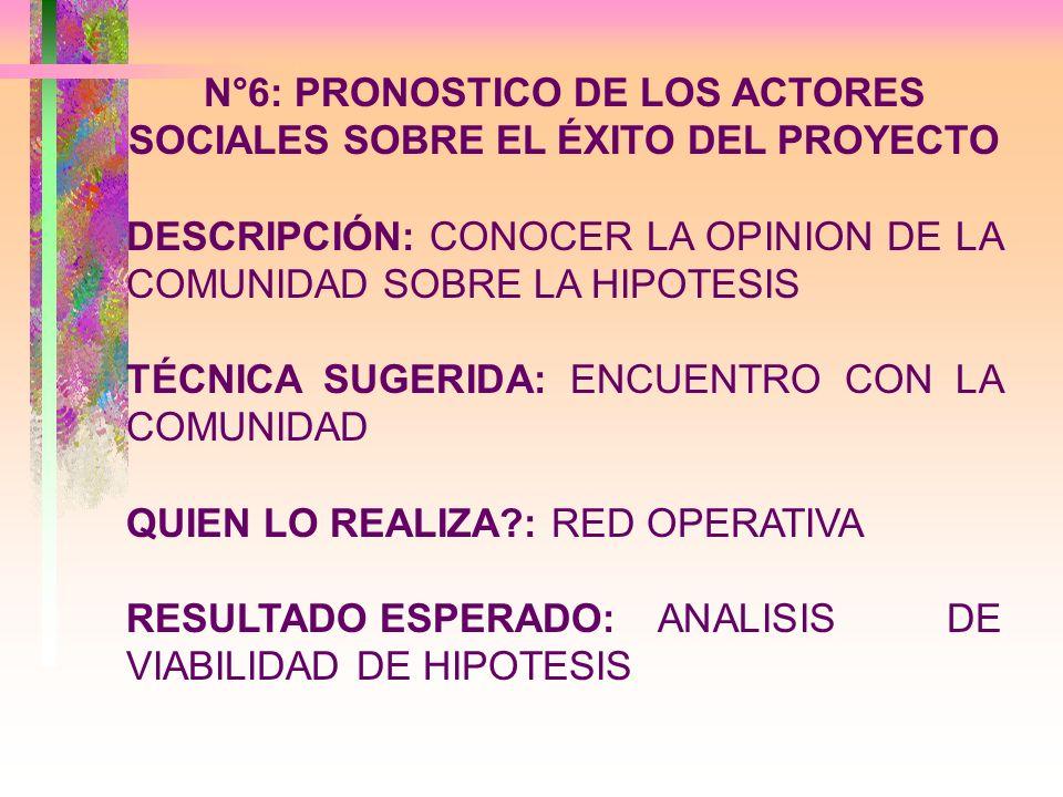 N°6: PRONOSTICO DE LOS ACTORES SOCIALES SOBRE EL ÉXITO DEL PROYECTO