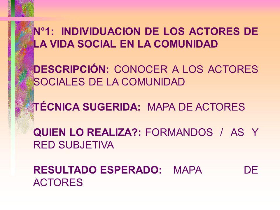 N°1: INDIVIDUACION DE LOS ACTORES DE LA VIDA SOCIAL EN LA COMUNIDAD