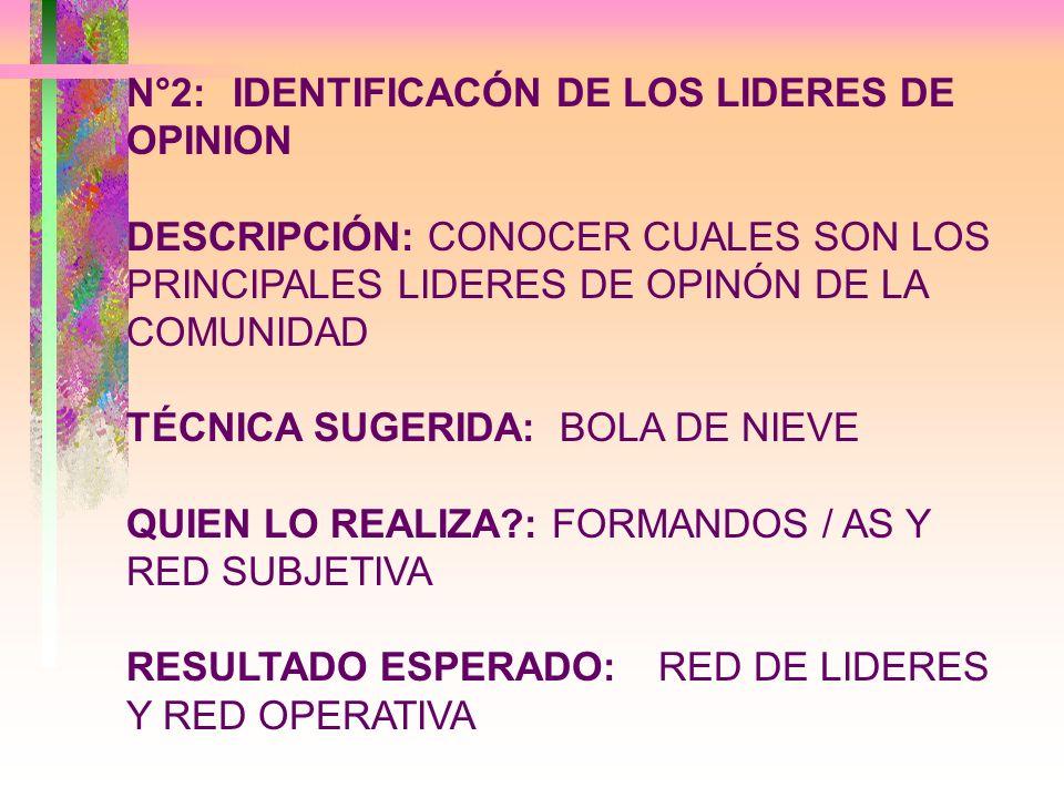N°2: IDENTIFICACÓN DE LOS LIDERES DE OPINION