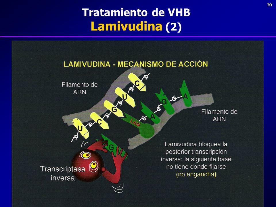 Tratamiento de VHB Lamivudina (2)