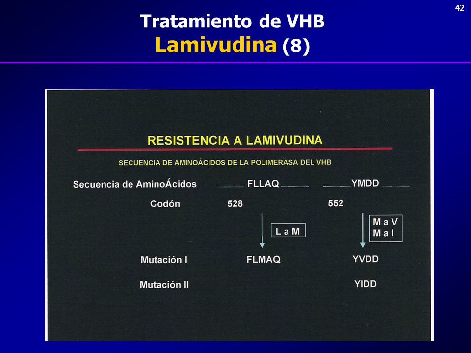Tratamiento de VHB Lamivudina (8)