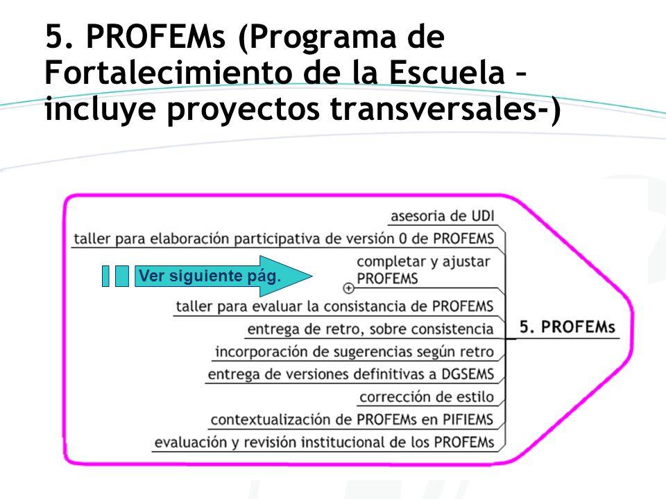 5. PROFEMs (Programa de Fortalecimiento de la Escuela –incluye proyectos transversales-)
