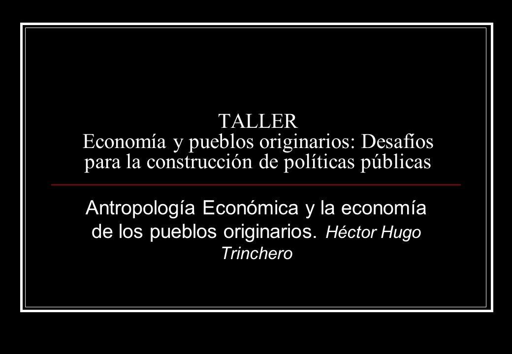TALLER Economía y pueblos originarios: Desafíos para la construcción de políticas públicas