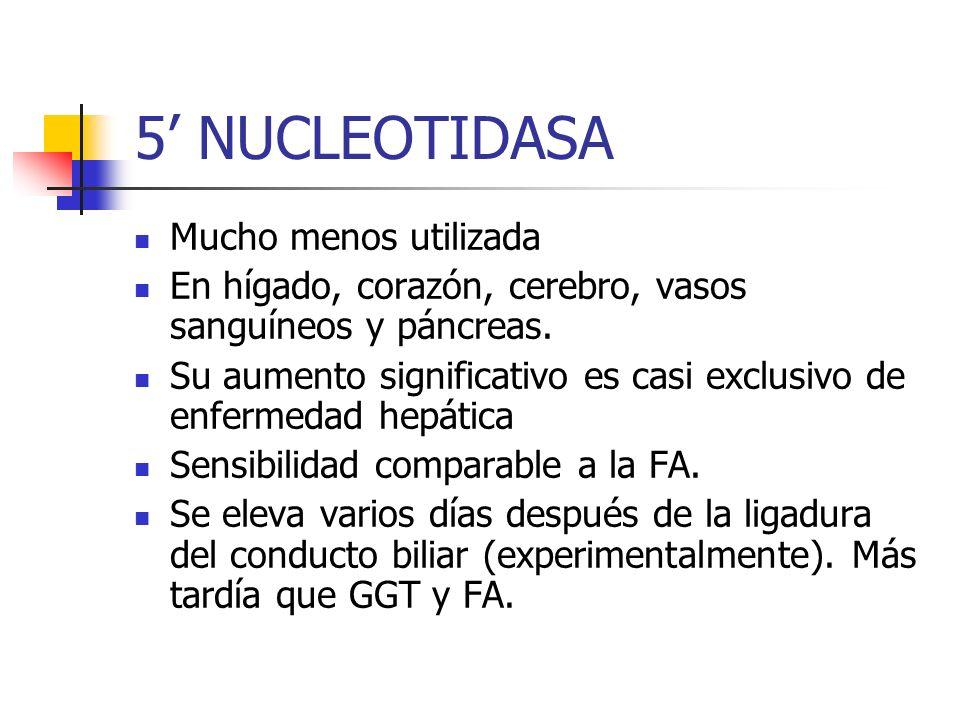 5' NUCLEOTIDASA Mucho menos utilizada