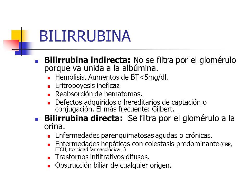 BILIRRUBINA Bilirrubina indirecta: No se filtra por el glomérulo porque va unida a la albúmina. Hemólisis. Aumentos de BT<5mg/dl.