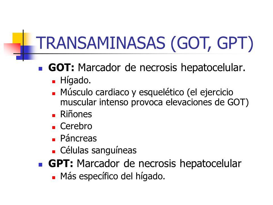 TRANSAMINASAS (GOT, GPT)
