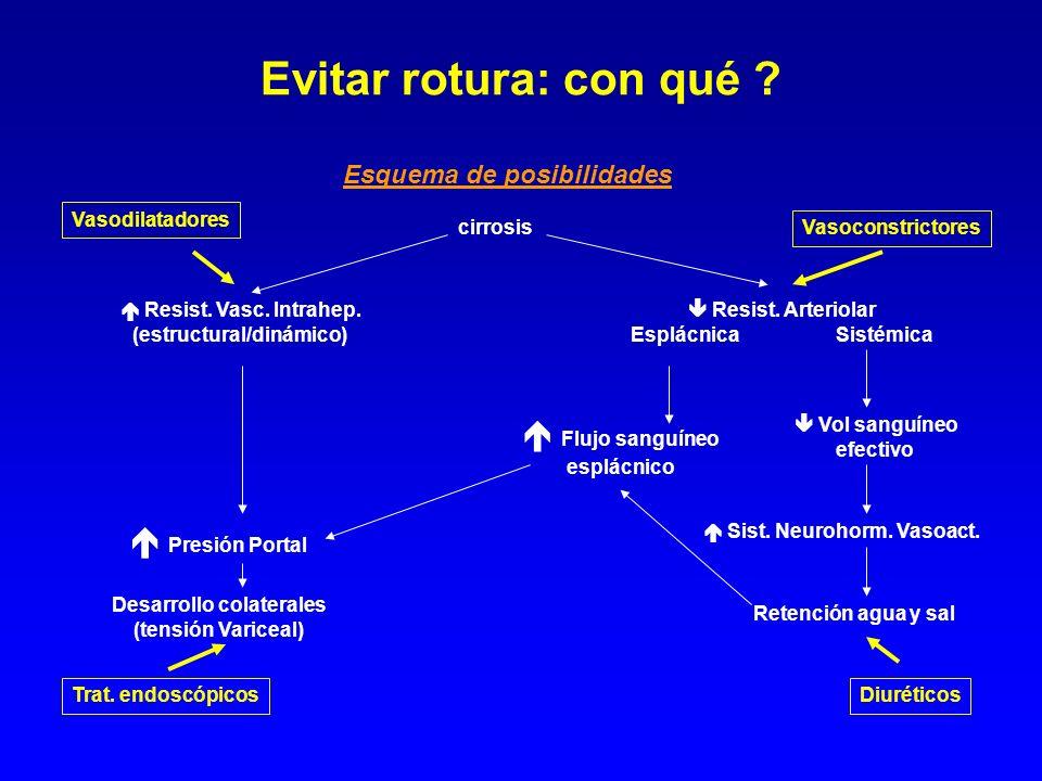 (estructural/dinámico) Desarrollo colaterales