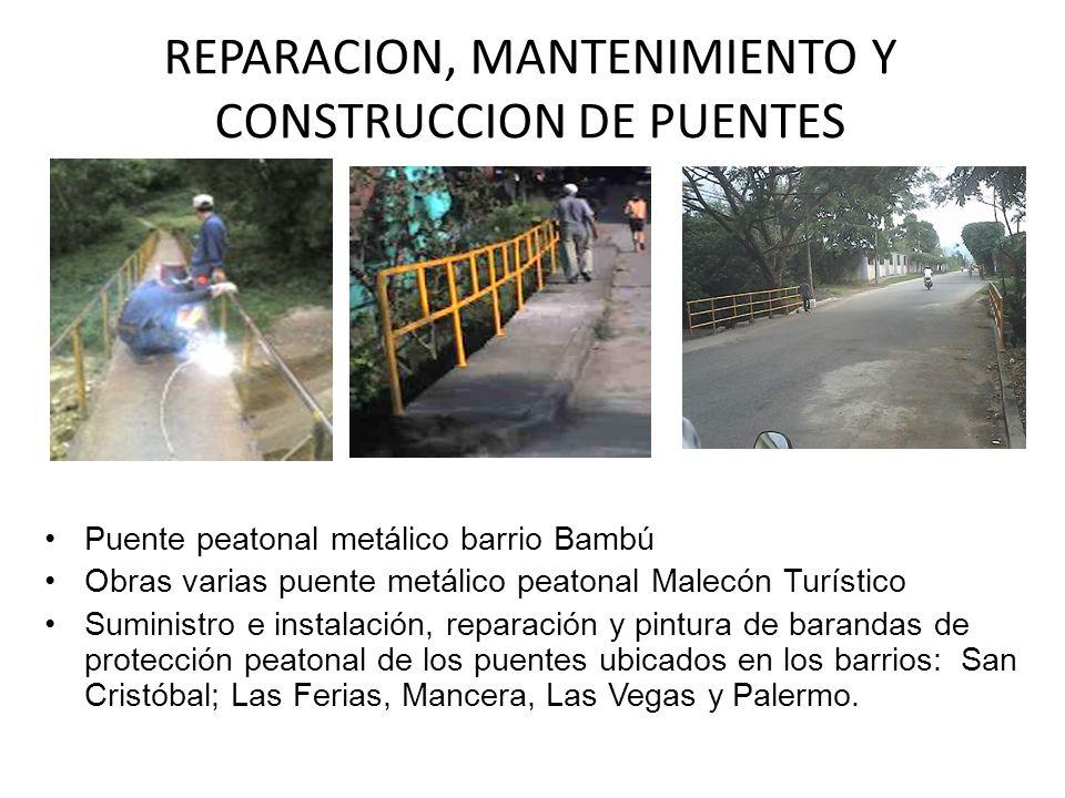 REPARACION, MANTENIMIENTO Y CONSTRUCCION DE PUENTES