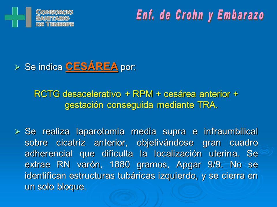 Enf. de Crohn y Embarazo Se indica CESÁREA por: RCTG desacelerativo + RPM + cesárea anterior + gestación conseguida mediante TRA.