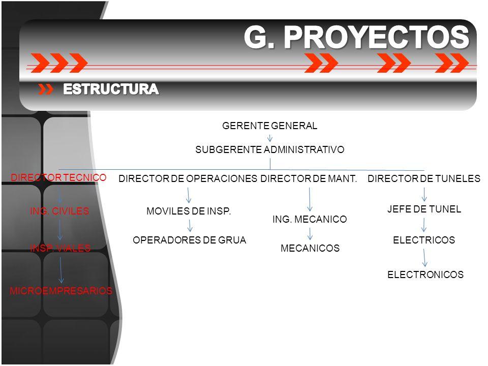G. PROYECTOS ESTRUCTURA GERENTE GENERAL SUBGERENTE ADMINISTRATIVO