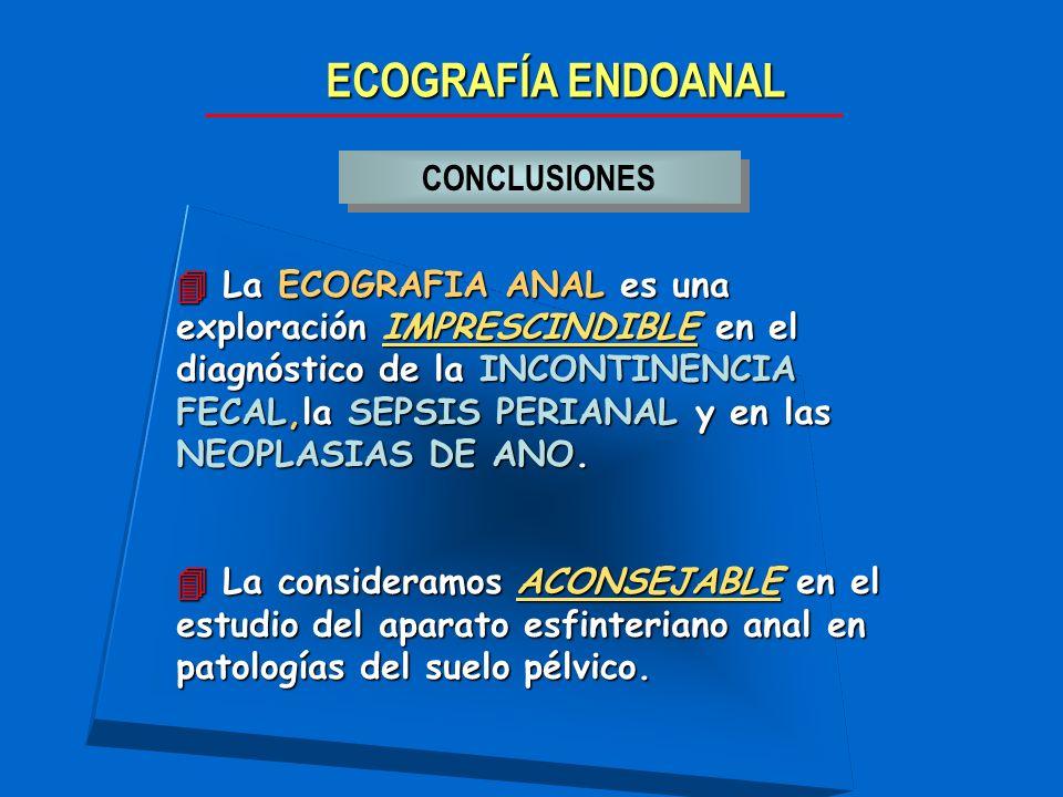 ECOGRAFÍA ENDOANAL CONCLUSIONES