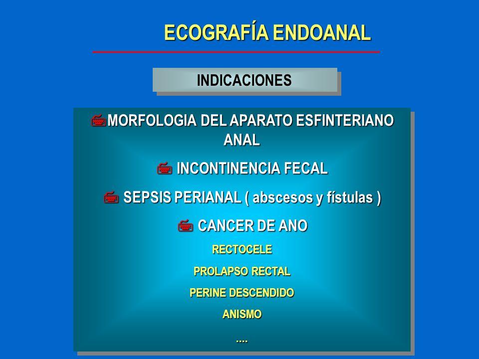 ECOGRAFÍA ENDOANAL INDICACIONES