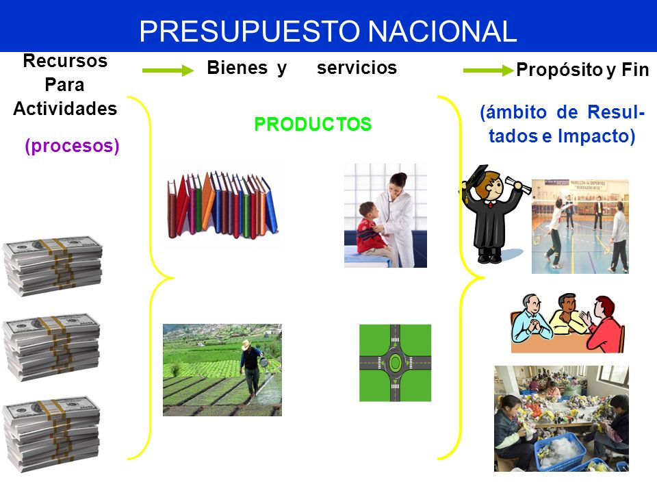 PRESUPUESTO NACIONAL Recursos Bienes y servicios Propósito y Fin Para