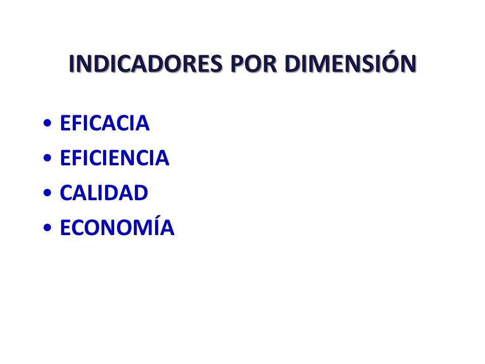 INDICADORES POR DIMENSIÓN