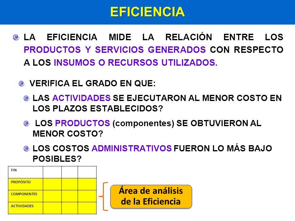 Área de análisis de la Eficiencia