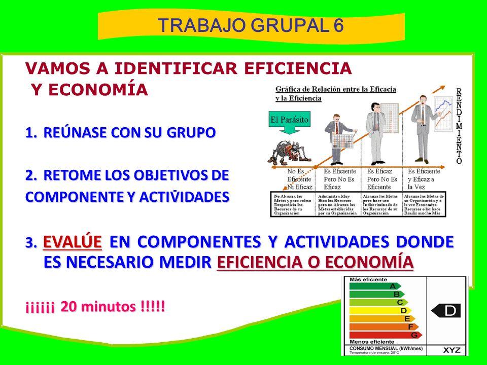 TRABAJO GRUPAL 6 VAMOS A IDENTIFICAR EFICIENCIA Y ECONOMÍA