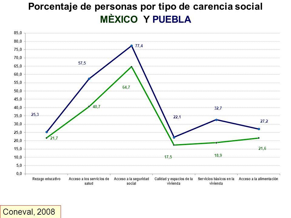 Porcentaje de personas por tipo de carencia social