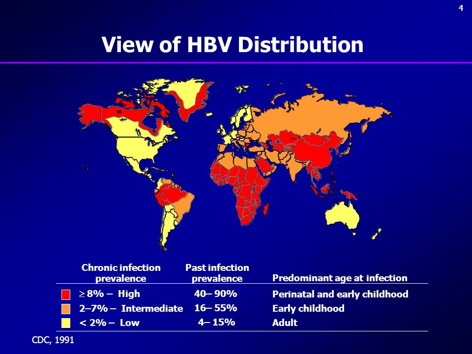 View of HBV Distribution