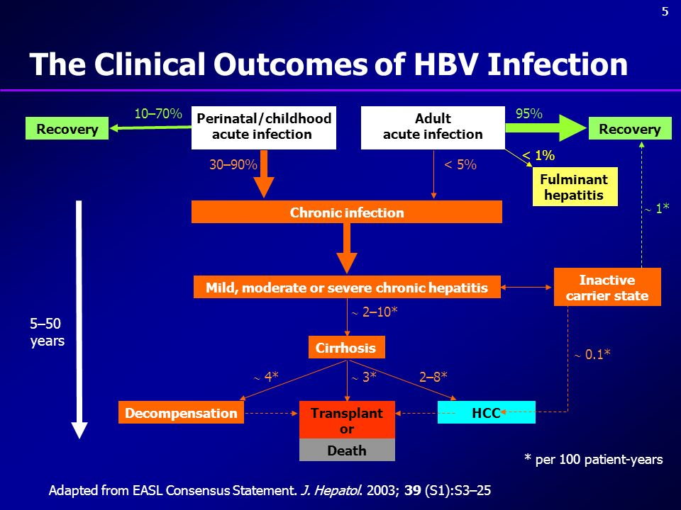 The Clinical Outcomes of HBV Infection