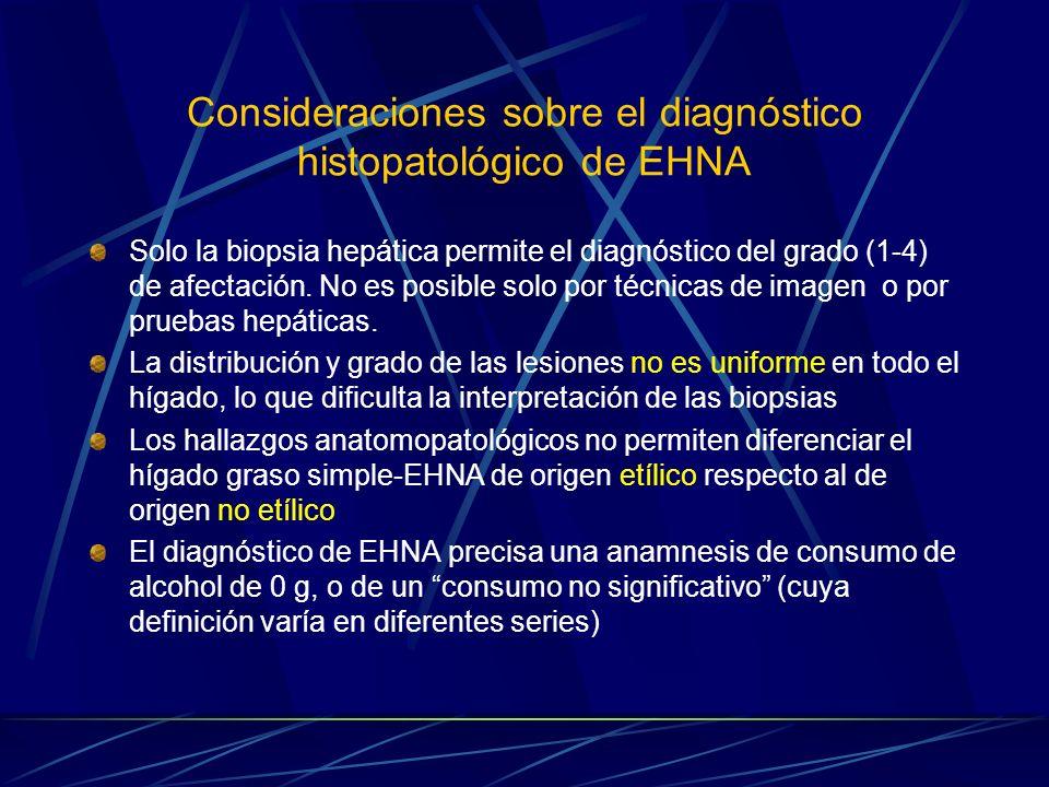 Consideraciones sobre el diagnóstico histopatológico de EHNA