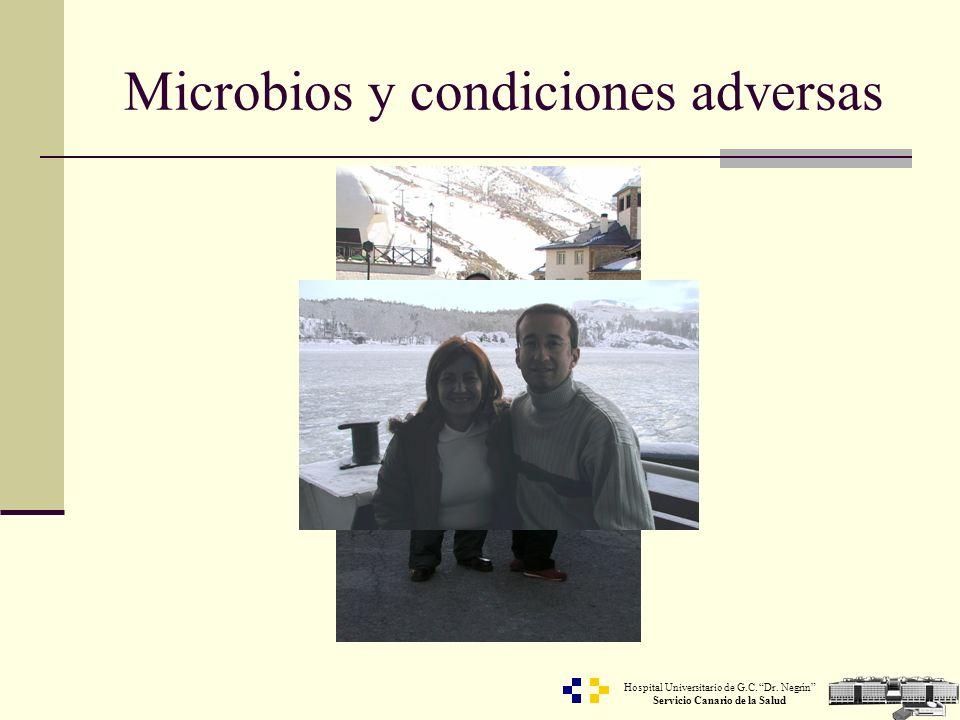 Microbios y condiciones adversas